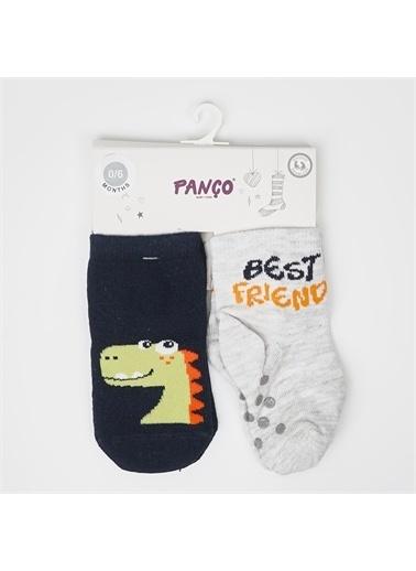 Panço 0-3 Yaş Erkek 2 li Çorap 2012BB11010 Renksiz